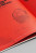 Magpie Sachin Detail