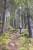 Magpie Everleaf Trekking
